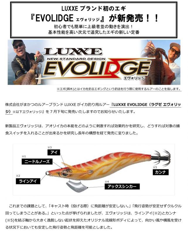 画像3: LUXXE EVOLIDGE 2.5号 (25%OFF)