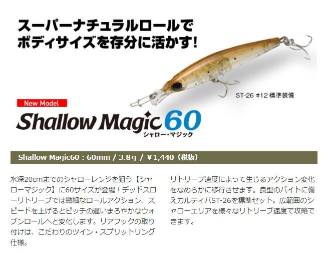 画像1: Aqua Wave Shallow Magic 60 (25%Off)