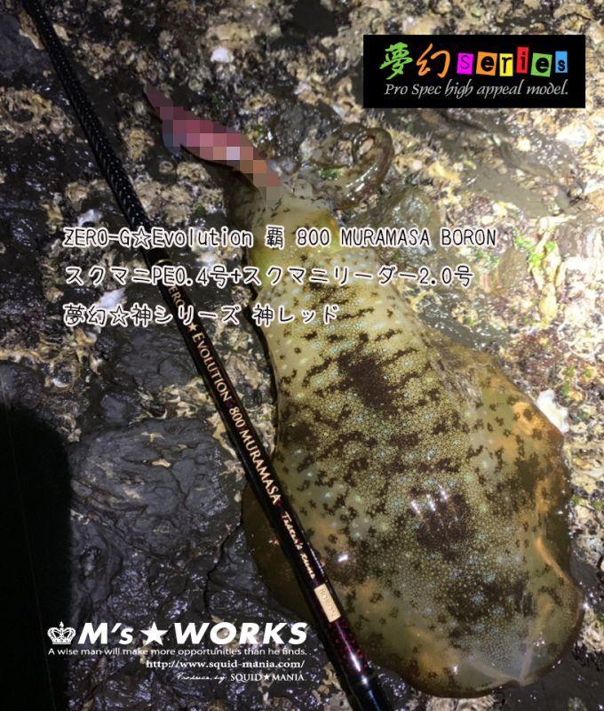 画像1: 30m☆ショックリーダー SMOKE SHIELD  2.0号