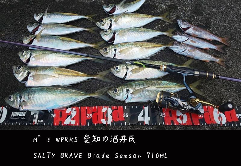 画像1: SALTY BRAVE Blade Sensor 710ML / Type-T /BORON (限定Maziora)
